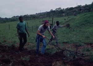 Swaziland land preparation2